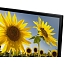 samsung.com_ru_consumer_televisions_televisions_tv-led_ru_ue24h4080auxru_021_detail2_black_dt-gallery